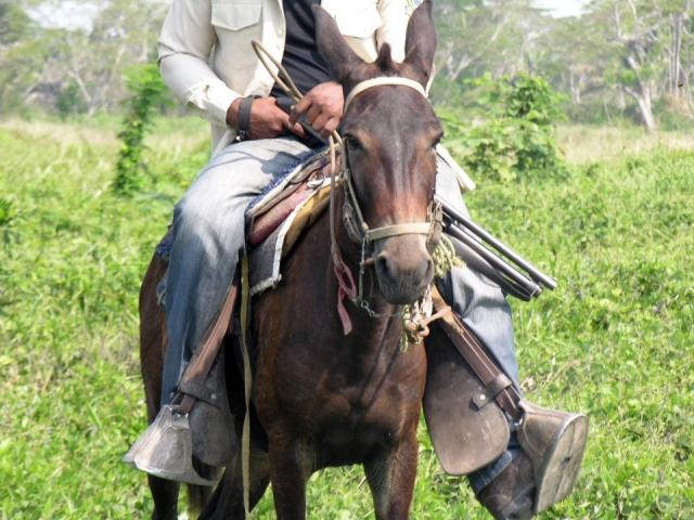 Uno de los hombres armados que trabajan para la empresa Aportes San Isidro en la hacienda Las Pavas